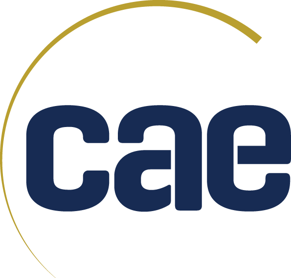 Logo for Centre for Accessible Environments (CAE)